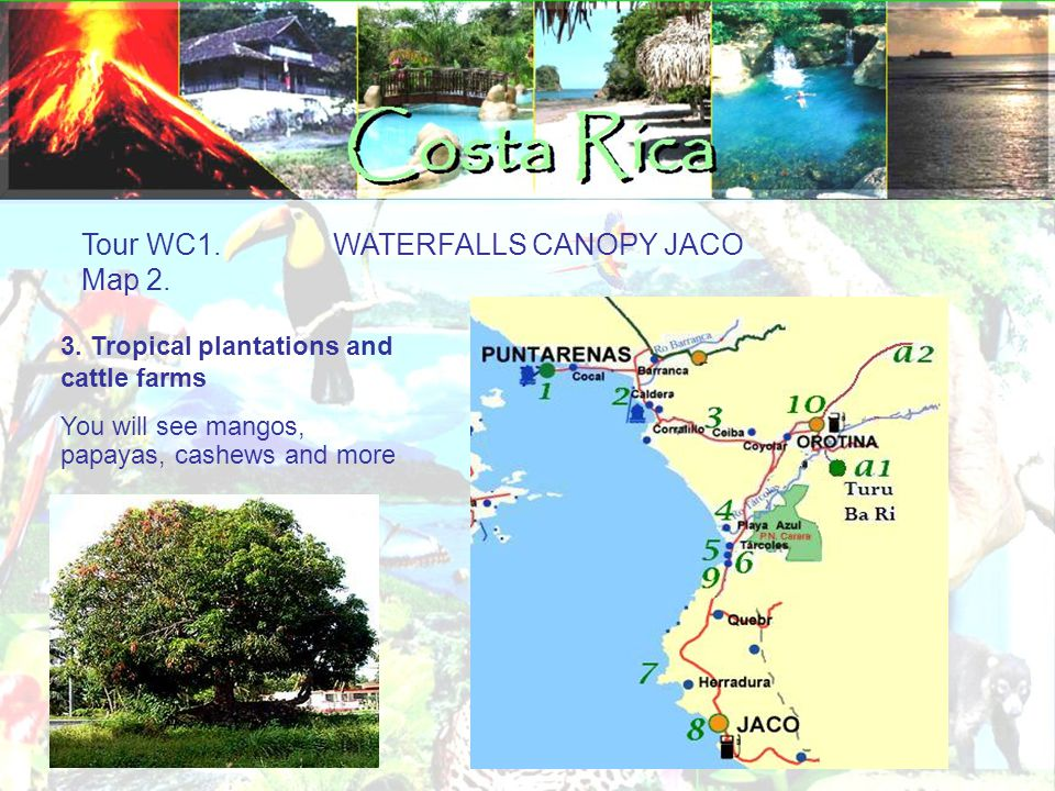 Tour WC1. WATERFALLS CANOPY JACO Additional options A1: Aerial tram: (per person): $55