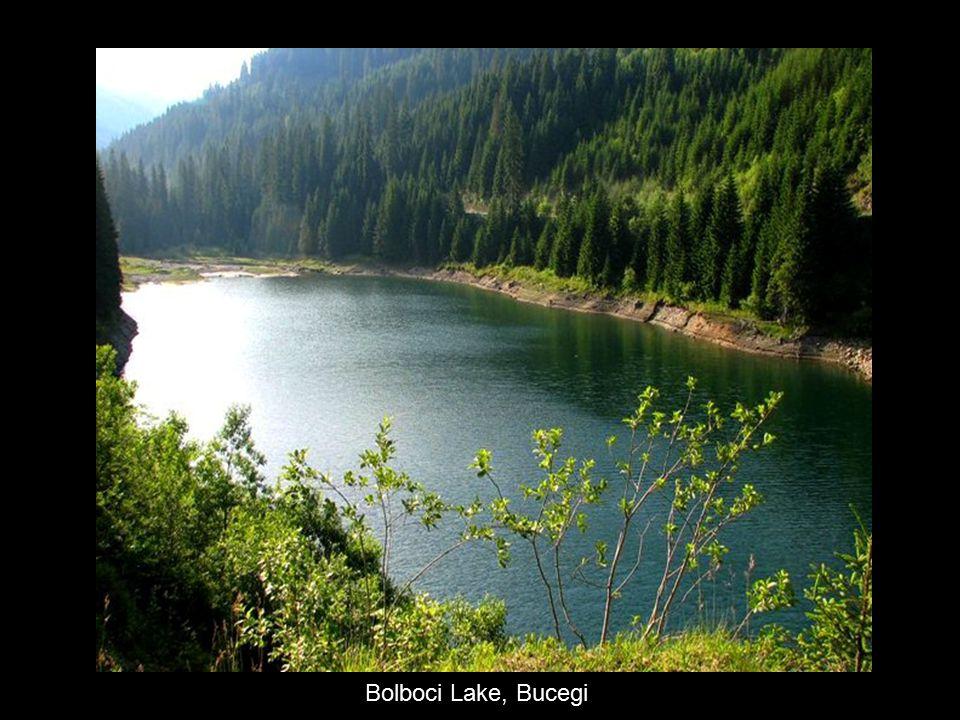 Bolboci Lake, Bucegi