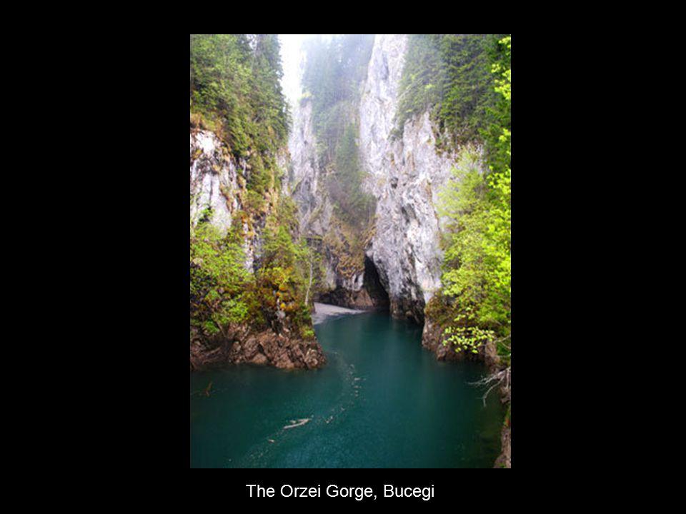 The Orzei Gorge, Bucegi