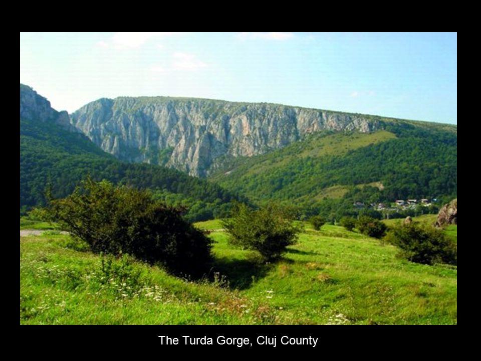 The Turda Gorge, Cluj County