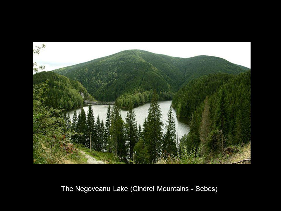 The Negoveanu Lake (Cindrel Mountains - Sebes)