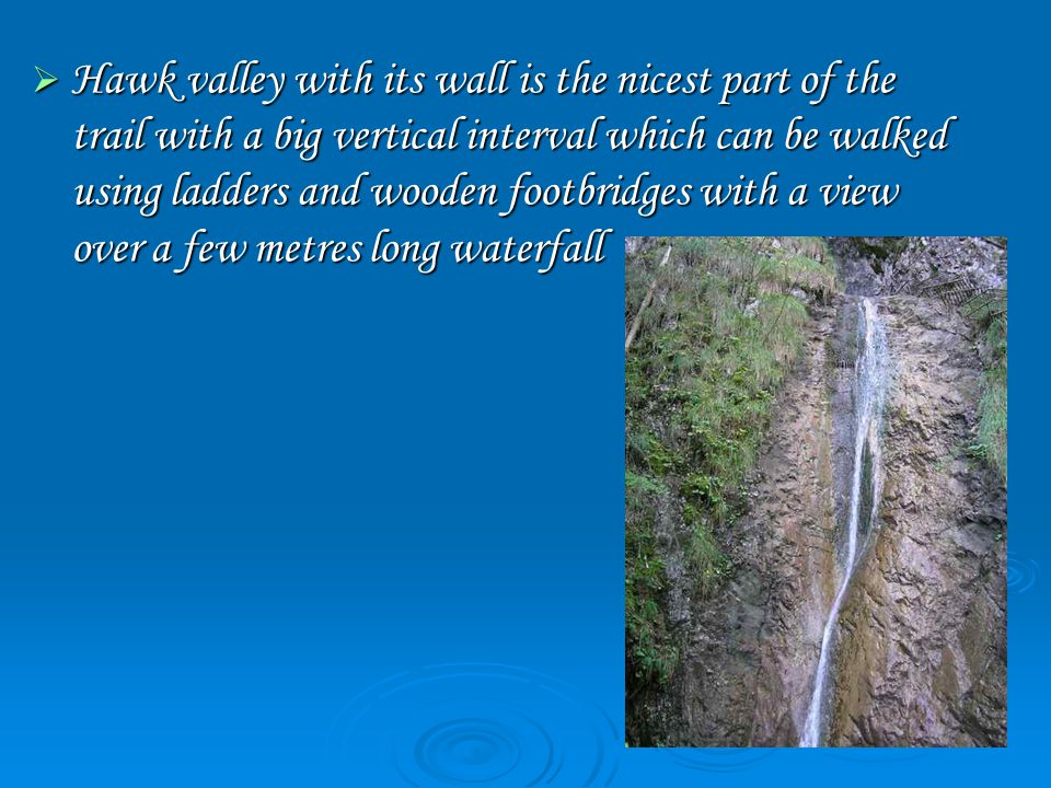  Hawk valley with its wall is the nicest part of the trail with a big vertical interval which can be walked using ladders and wooden footbridges with a view over a few metres long waterfall