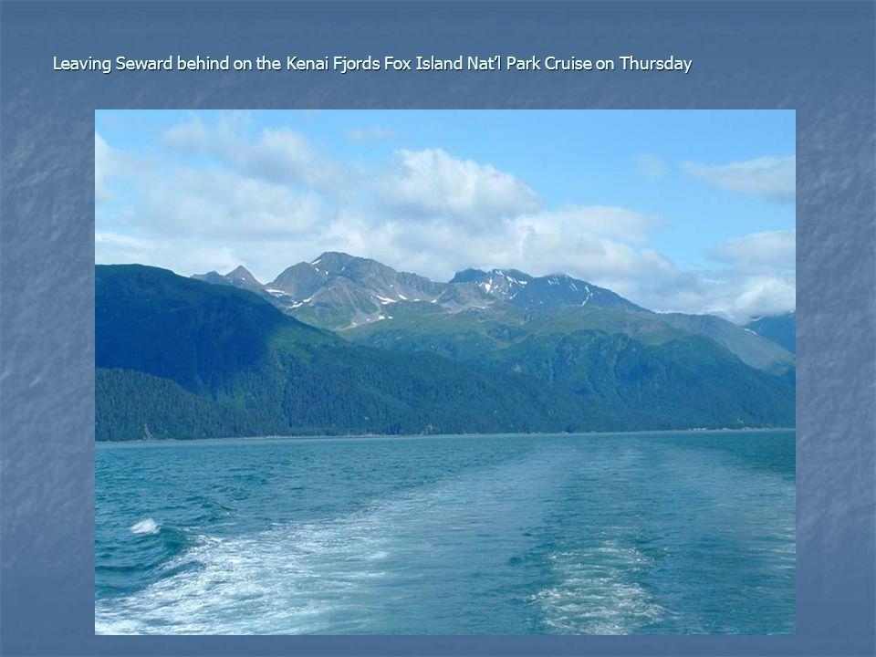 Leaving Seward behind on the Kenai Fjords Fox Island Nat'l Park Cruise on Thursday