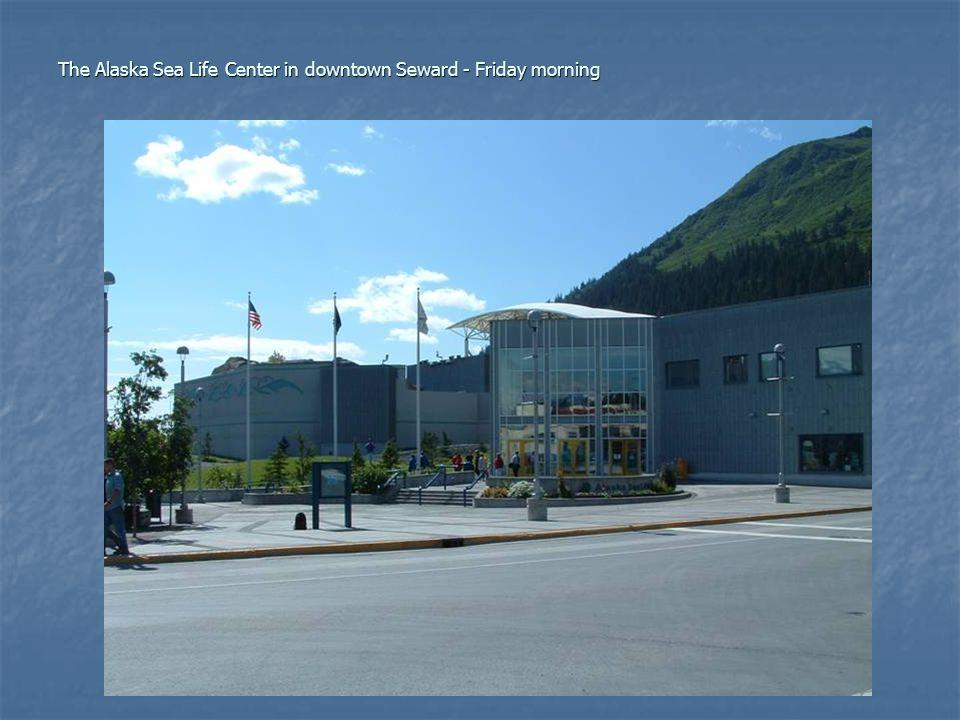 The Alaska Sea Life Center in downtown Seward - Friday morning