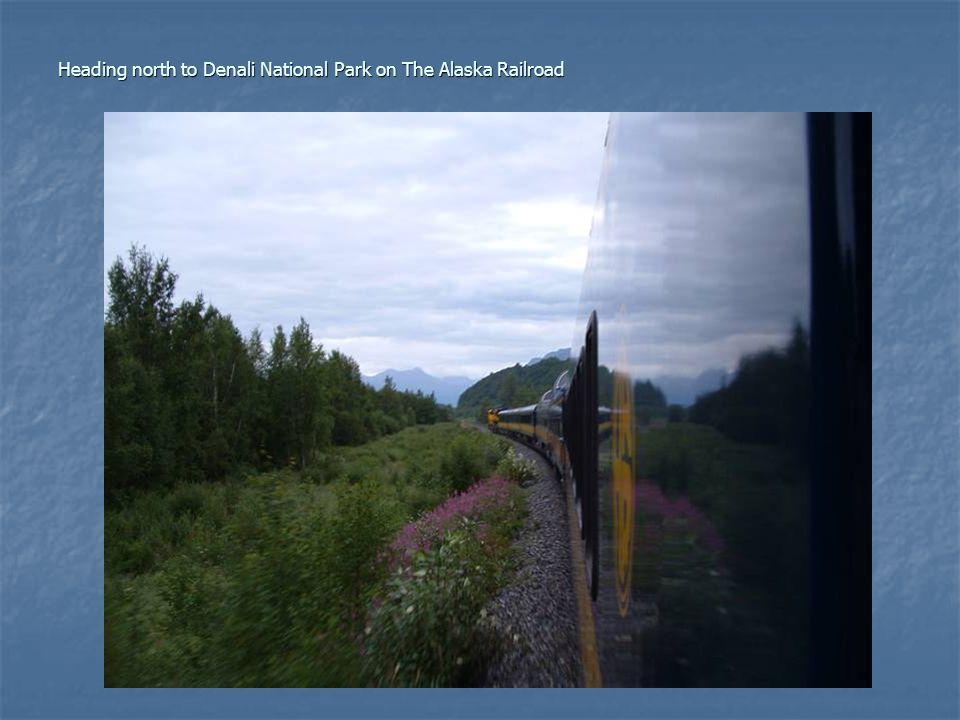 Heading north to Denali National Park on The Alaska Railroad