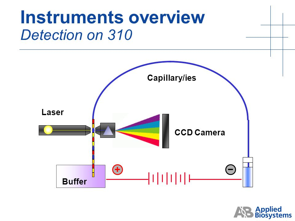 Scanner Plates with acrylamide gel Laser CCD Camera Instruments overview Detection on 377