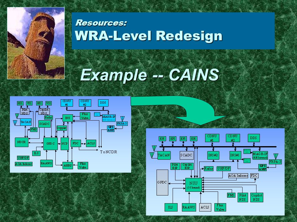 Resources: WRA-Level Redesign Example -- CAINS