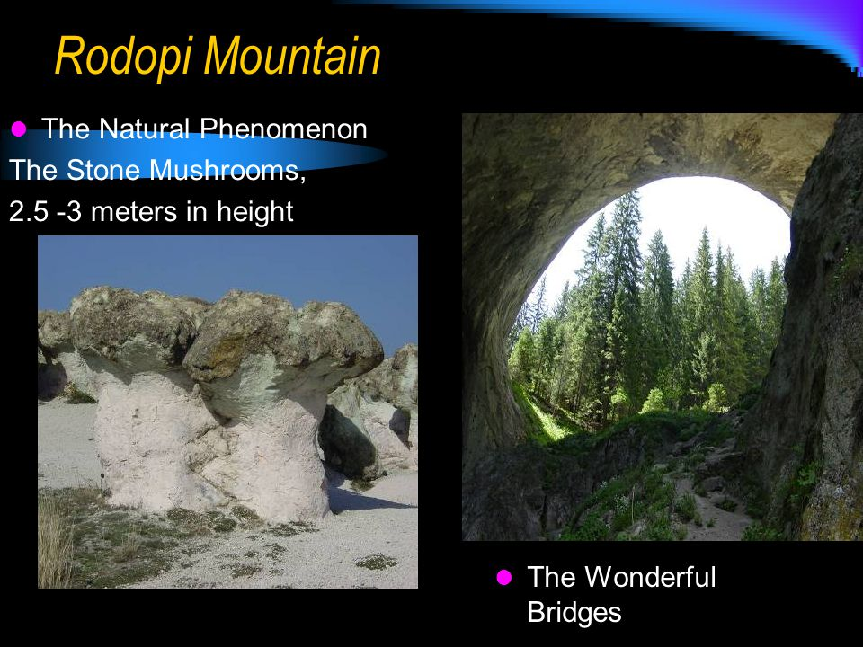 Rodopi Mountain The Natural Phenomenon The Stone Mushrooms, 2.5 -3 meters in height The Wonderful Bridges