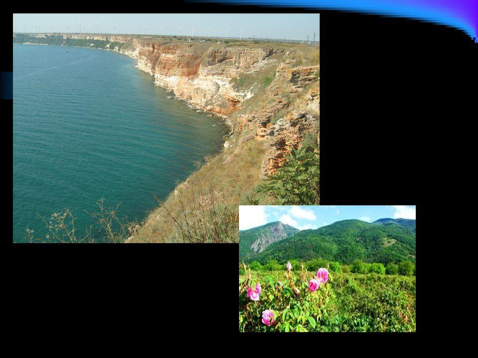 Rodopi Mountain The Natural Phenomenon The Stone Mushrooms, 2.5 -3 meters in height The Wonderful Bridges