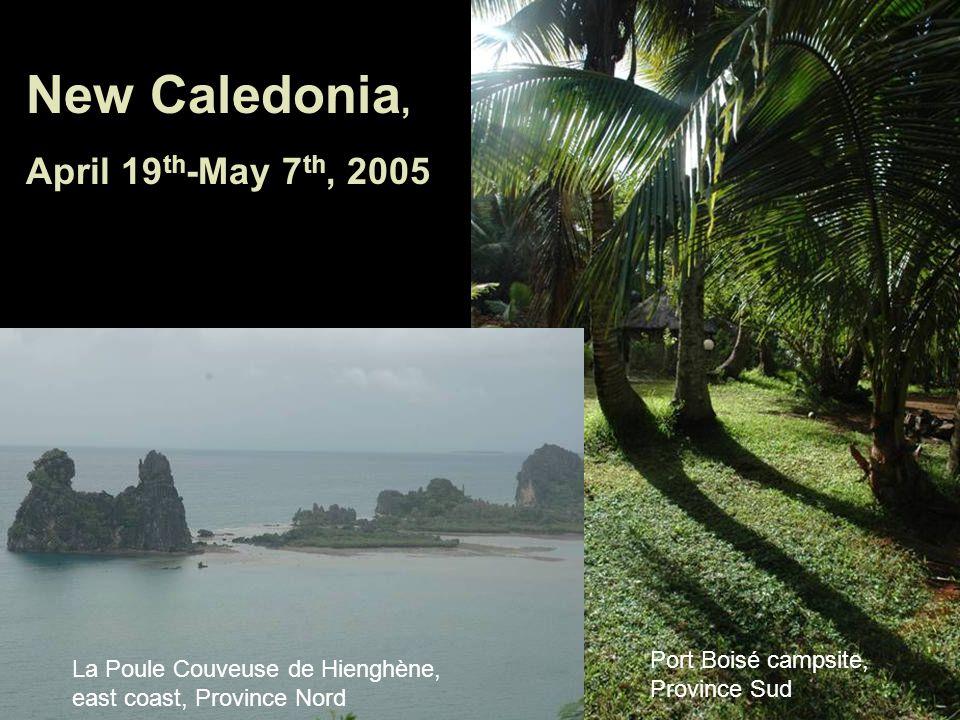 Port Boisé campsite, Province Sud New Caledonia, April 19 th -May 7 th, 2005 La Poule Couveuse de Hienghène, east coast, Province Nord