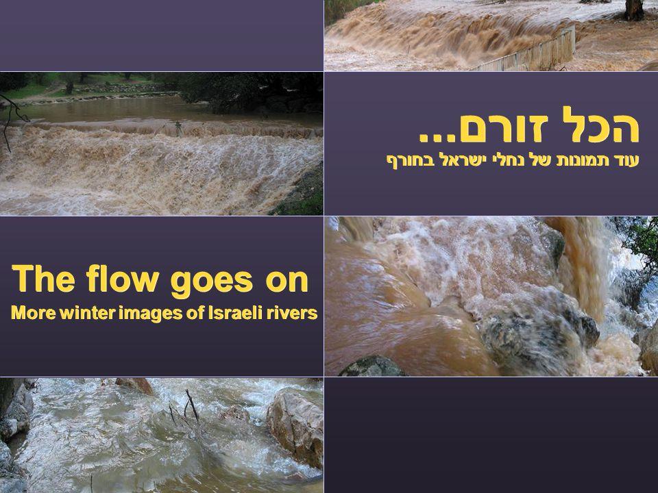 הכל זורם... The flow goes on עוד תמונות של נחלי ישראל בחורף More winter images of Israeli rivers