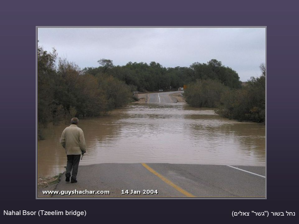 נחל בשור ( גשר צאלים) Nahal Bsor (Tzeelim bridge)