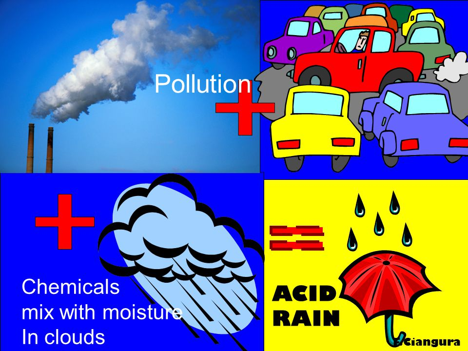 Pollution Chemicals mix with moisture In clouds ACID RAIN F.Ciangura