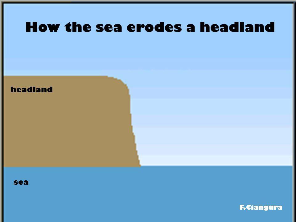 How the sea erodes a headland headland sea F.Ciangura