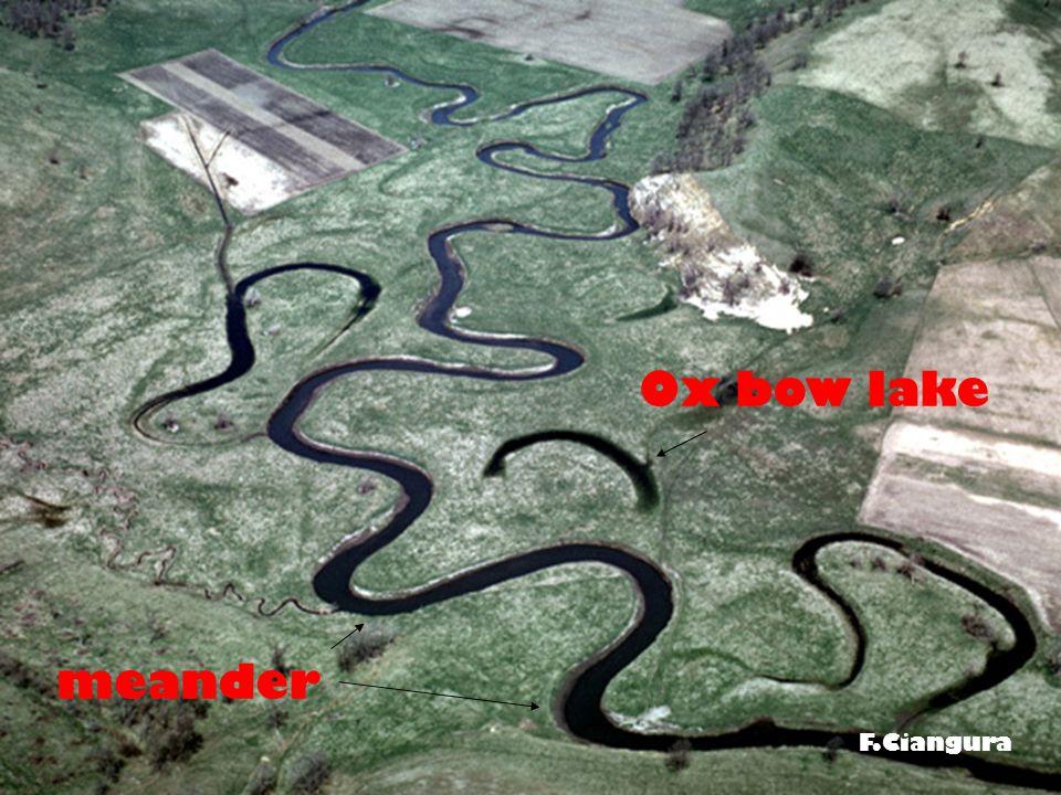 F.Ciangura meander Ox bow lake F.Ciangura