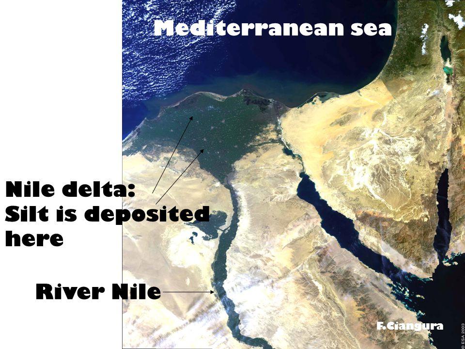 Nile delta: Silt is deposited here River Nile Mediterranean sea F.Ciangura