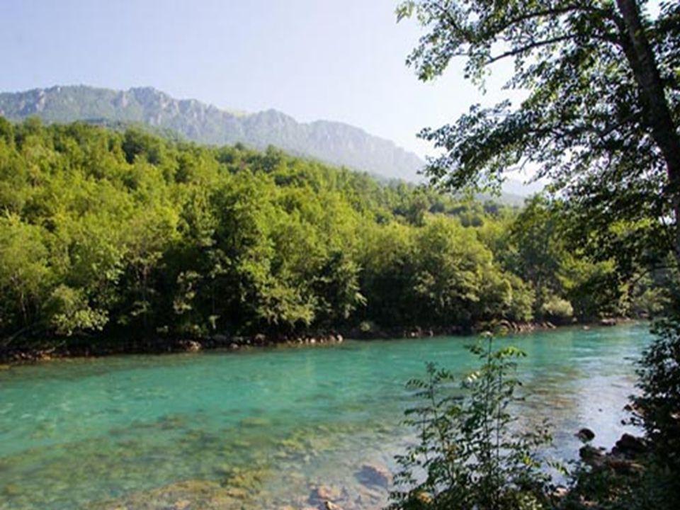 Ljubisa Mountain