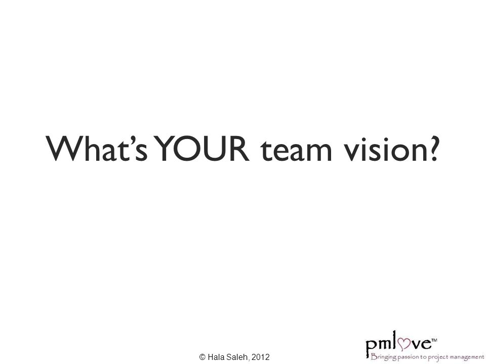 What's YOUR team vision? © Hala Saleh, 2012