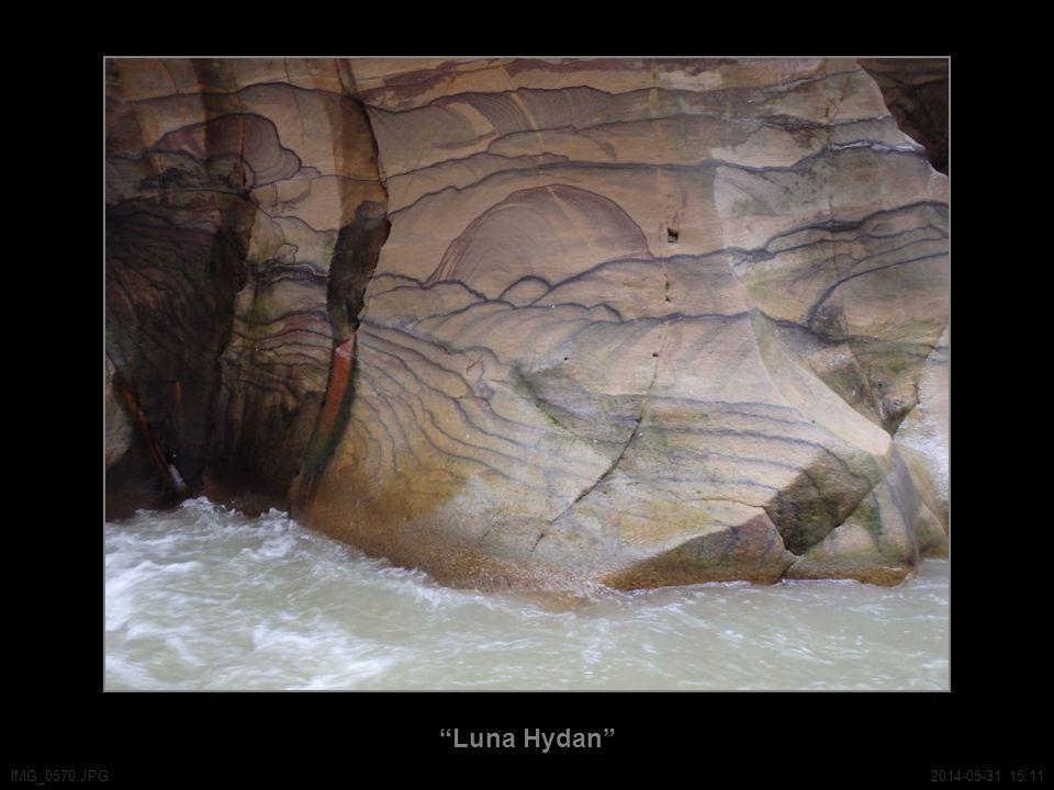 Luna Hydan IMG_0570.JPG2014-05-31 15:11