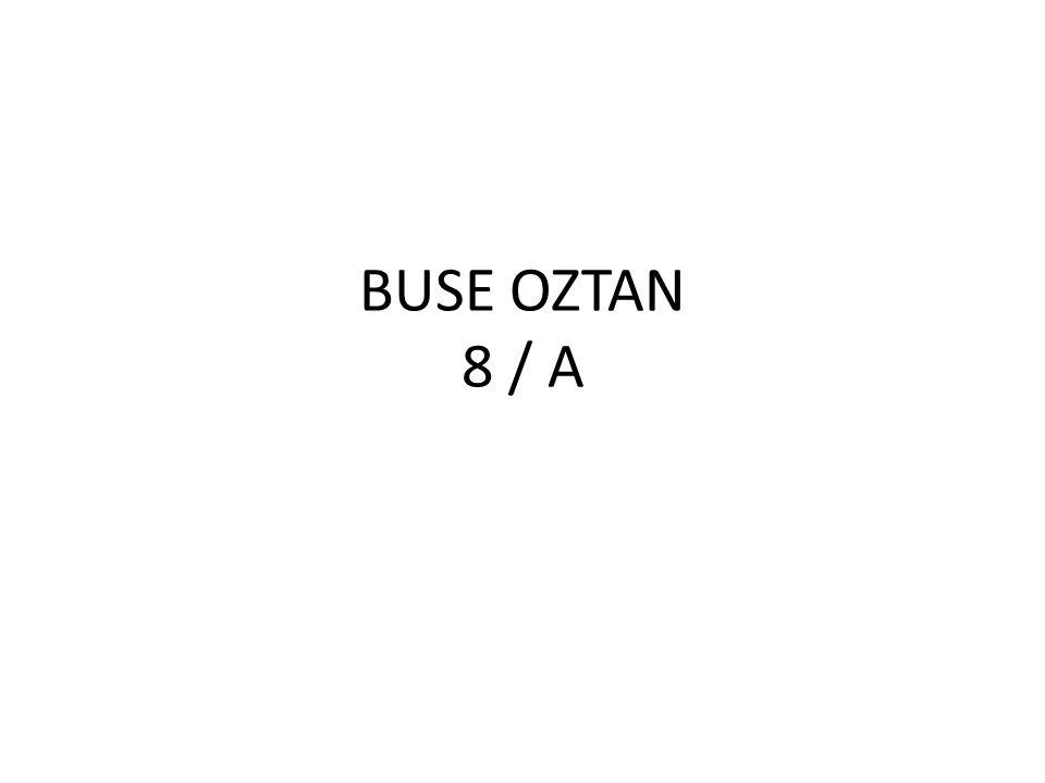 BUSE OZTAN 8 / A