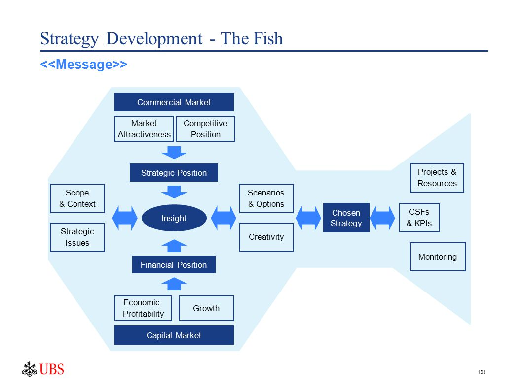 193 Strategy Development - The Fish Chosen Strategy Projects & Resources Monitoring Financial Position Strategic Position Capital Market Economic Profitability Growth Commercial Market Market Attractiveness Competitive Position Insight CSFs & KPIs Strategic Issues Scope & Context Creativity Scenarios & Options >
