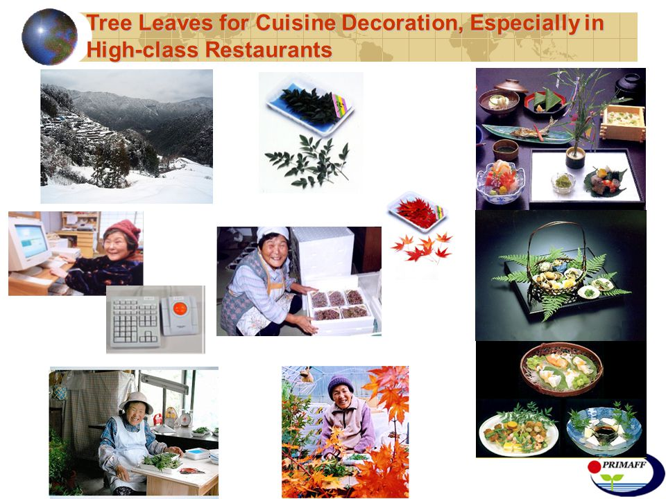 Tree Leaves for Cuisine Decoration, Especially in High-class Restaurants