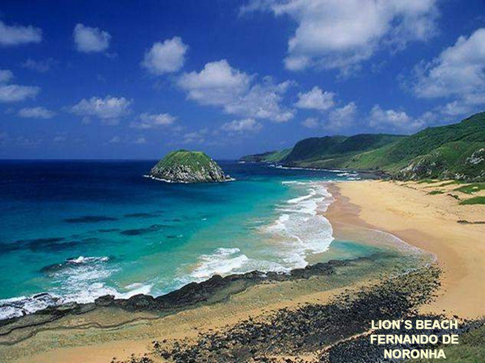 LOVE BEACH – PIPA - RN
