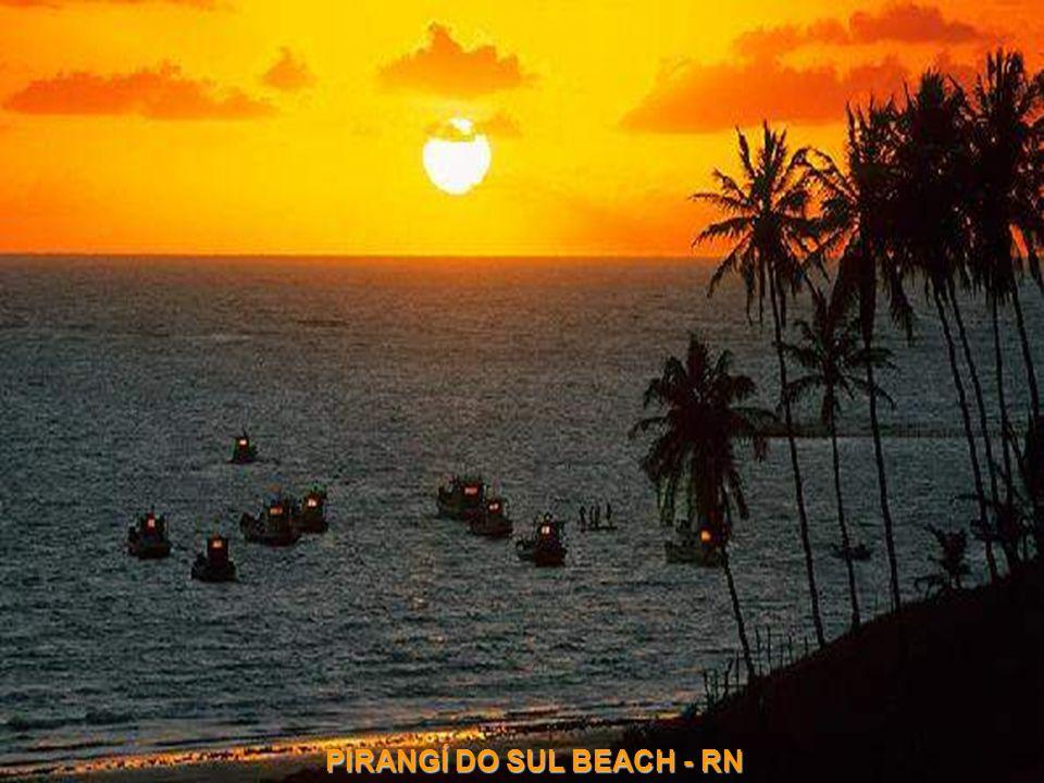 SANCHO BEACH - Fernando de Noronha