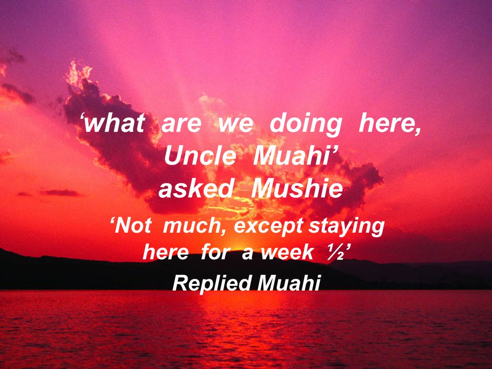'what are we doing here, Uncle Muahi' asked Mushie 'Not much, except staying here for a week ½' Replied Muahi
