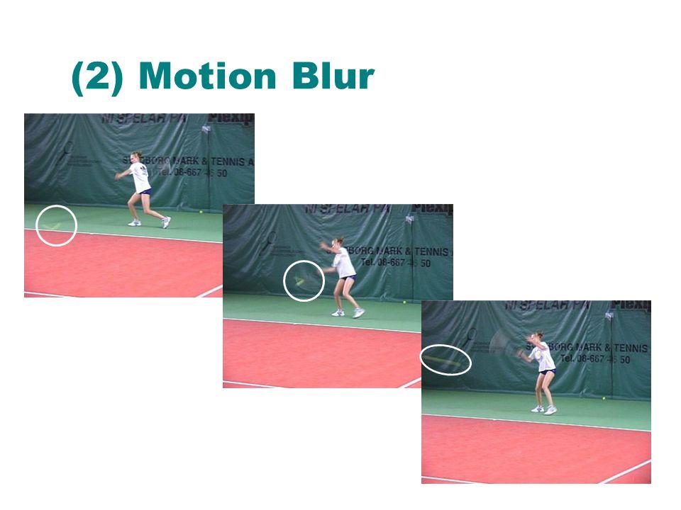 (2) Motion Blur