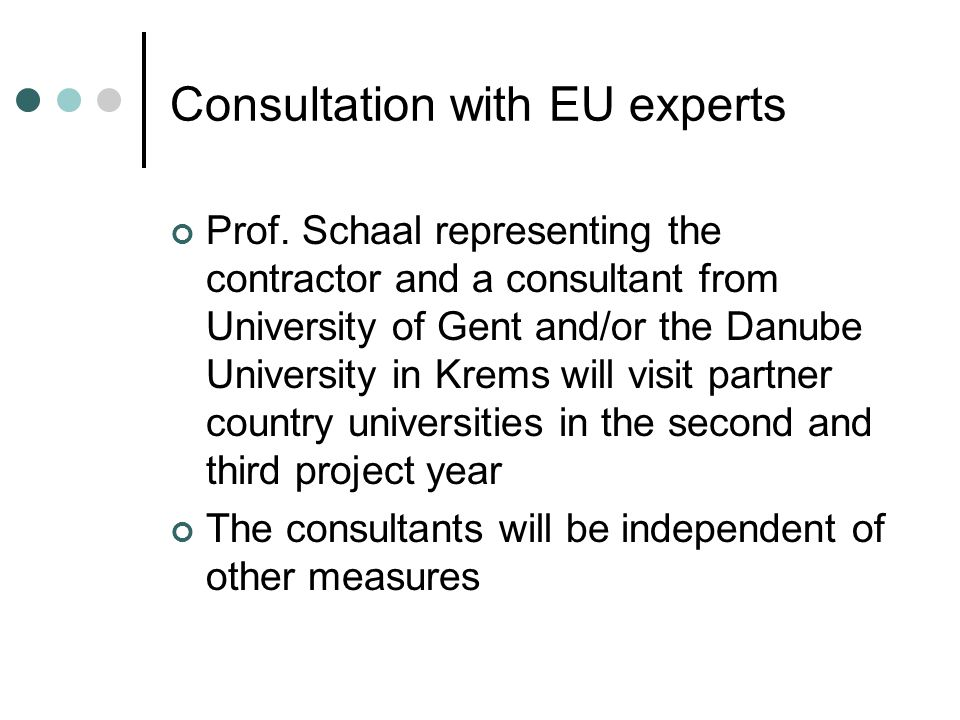 Consultation with EU experts Prof. Schaal representing the contractor and a consultant from University of Gent and/or the Danube University in Krems w
