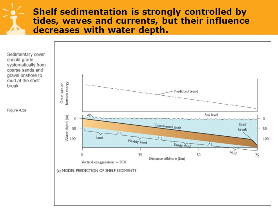 Shelf sedimentation is strongly controlled by tides, waves and currents, but their influence decreases with water depth.