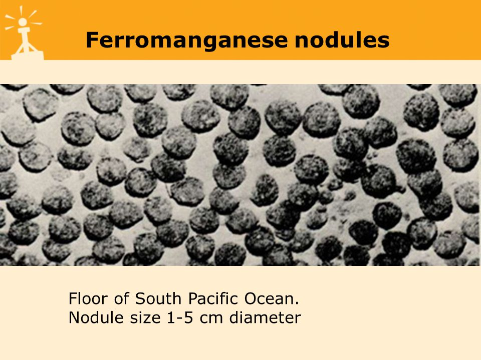 Ferromanganese nodules Floor of South Pacific Ocean. Nodule size 1-5 cm diameter