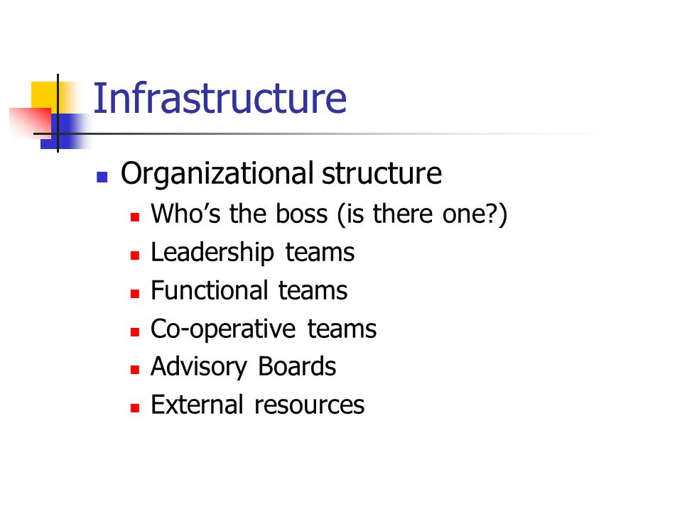 Infrastructure Organizational structure Who's the boss (is there one ) Leadership teams Functional teams Co-operative teams Advisory Boards External resources