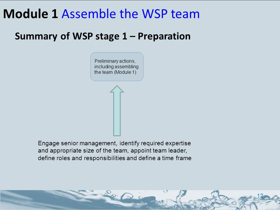Summary of WSP stage 1 – Preparation Module 1 Assemble the WSP team 12 Engage senior management, identify required expertise and appropriate size of t