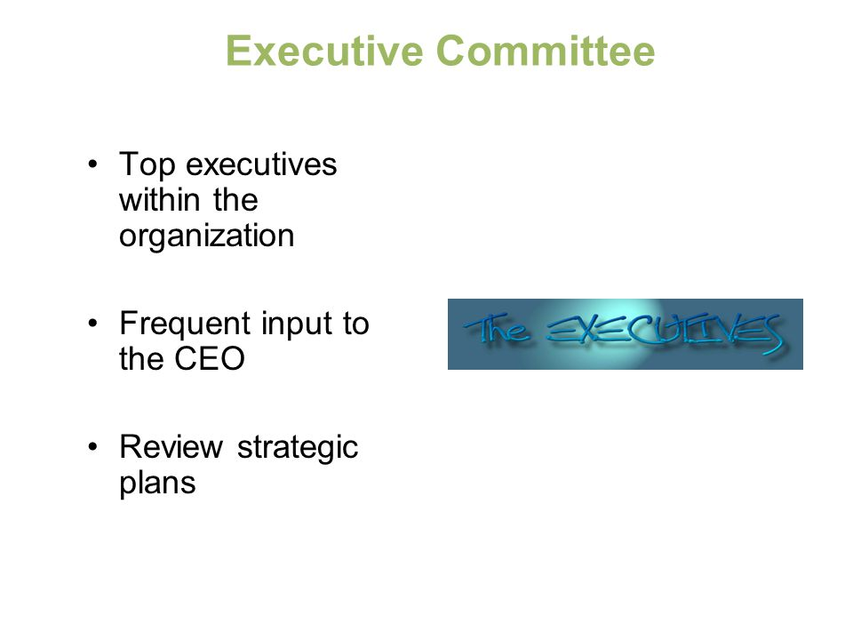Executive Committee Top executives within the organization Frequent input to the CEO Review strategic plans