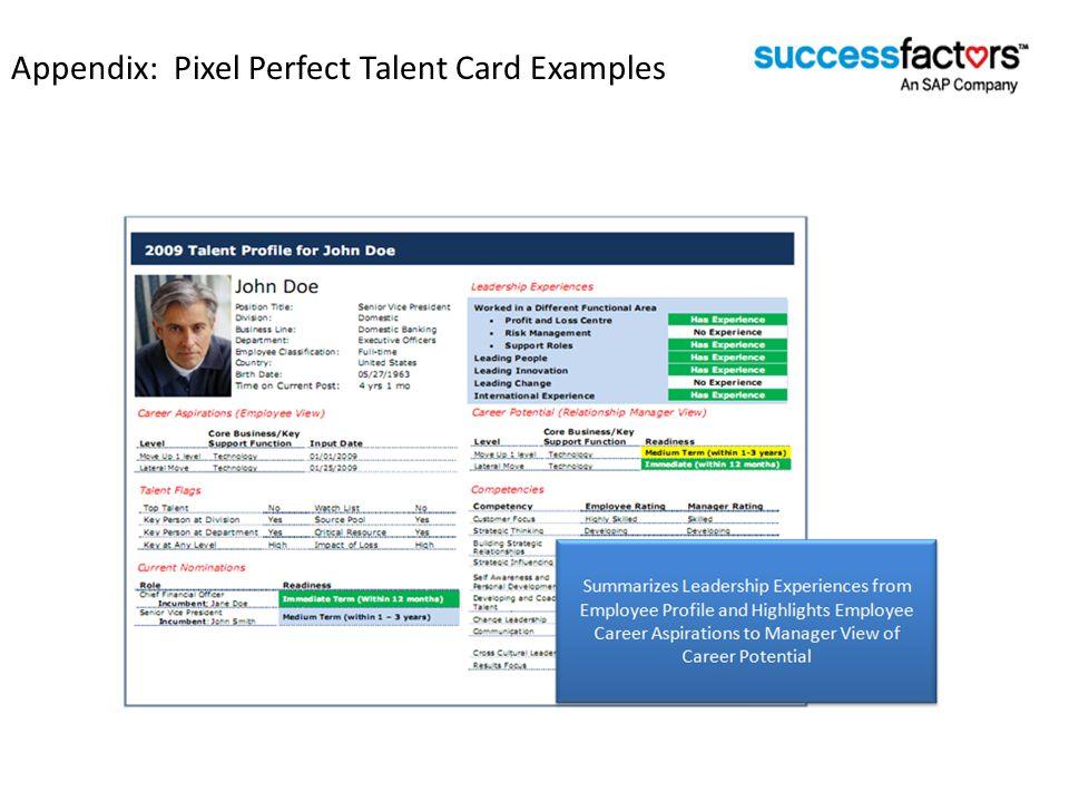 Appendix: Pixel Perfect Talent Card Examples