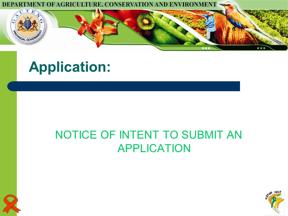 Application: NOTICE OF INTENT TO SUBMIT AN APPLICATION