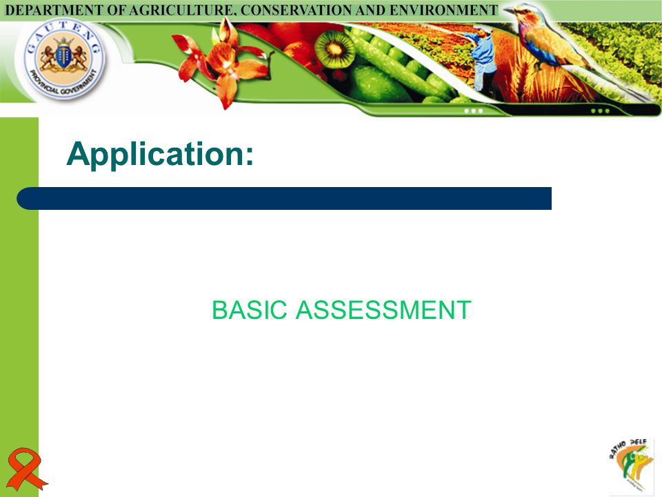 Application: BASIC ASSESSMENT