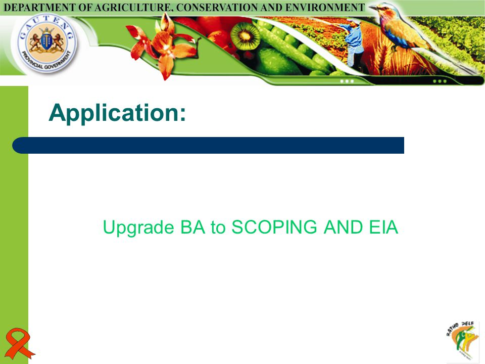 Application: Upgrade BA to SCOPING AND EIA