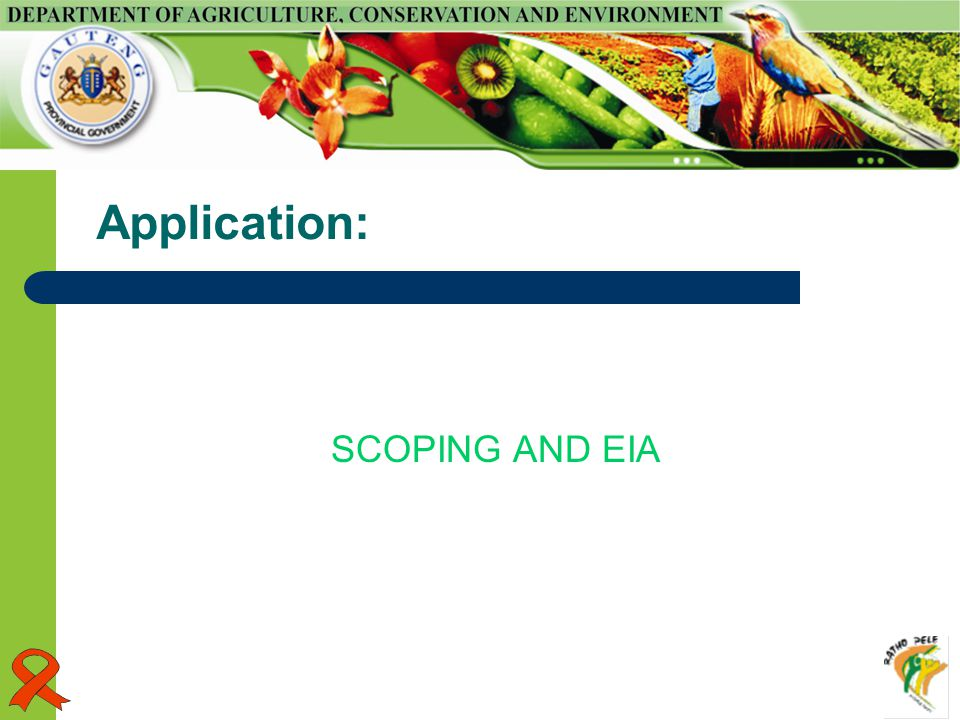 Application: SCOPING AND EIA