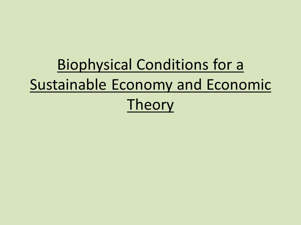 Biophysical Conditions for a Sustainable Economy and Economic Theory