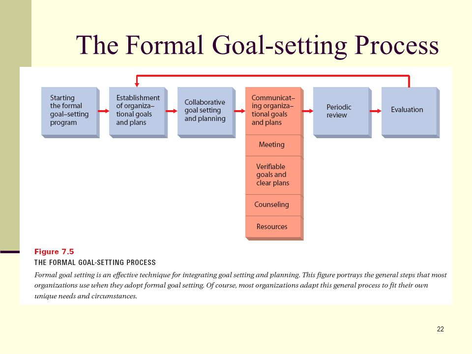 22 The Formal Goal-setting Process