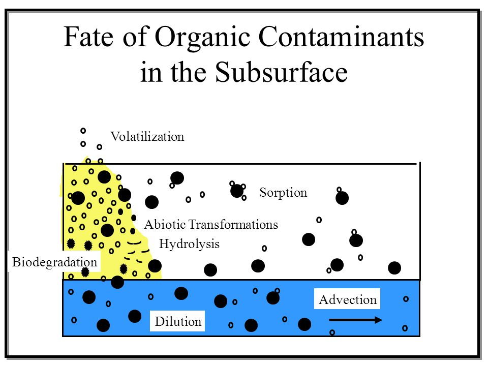 Advection Volatilization Biodegradation Dilution Abiotic Transformations Sorption Hydrolysis Fate of Organic Contaminants in the Subsurface