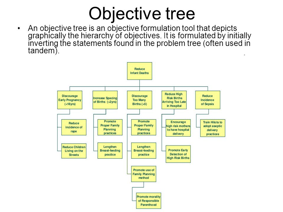 Objective tree An objective tree is an objective formulation tool that depicts graphically the hierarchy of objectives.