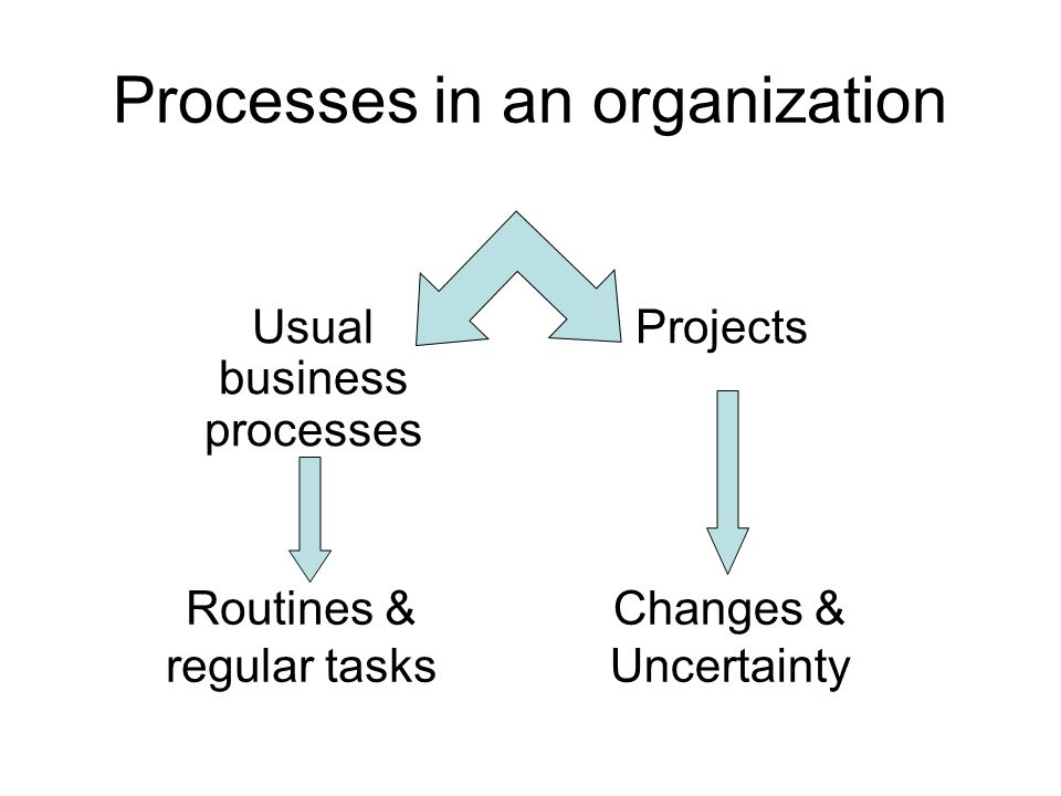 Processes in an organization Usual business processes Projects Changes & Uncertainty Routines & regular tasks