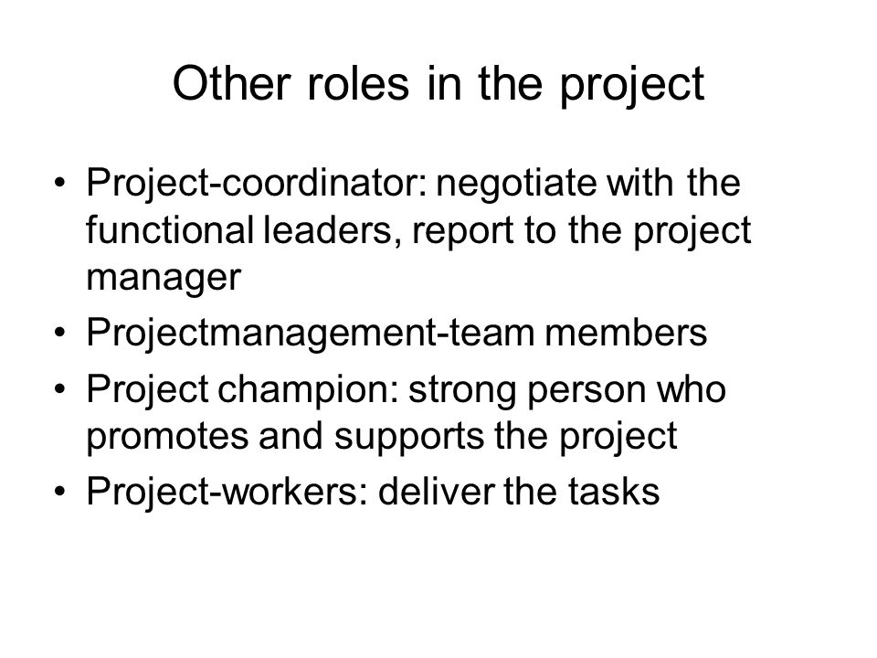 Other roles in the project Project-coordinator: negotiate with the functional leaders, report to the project manager Projectmanagement-team members Project champion: strong person who promotes and supports the project Project-workers: deliver the tasks