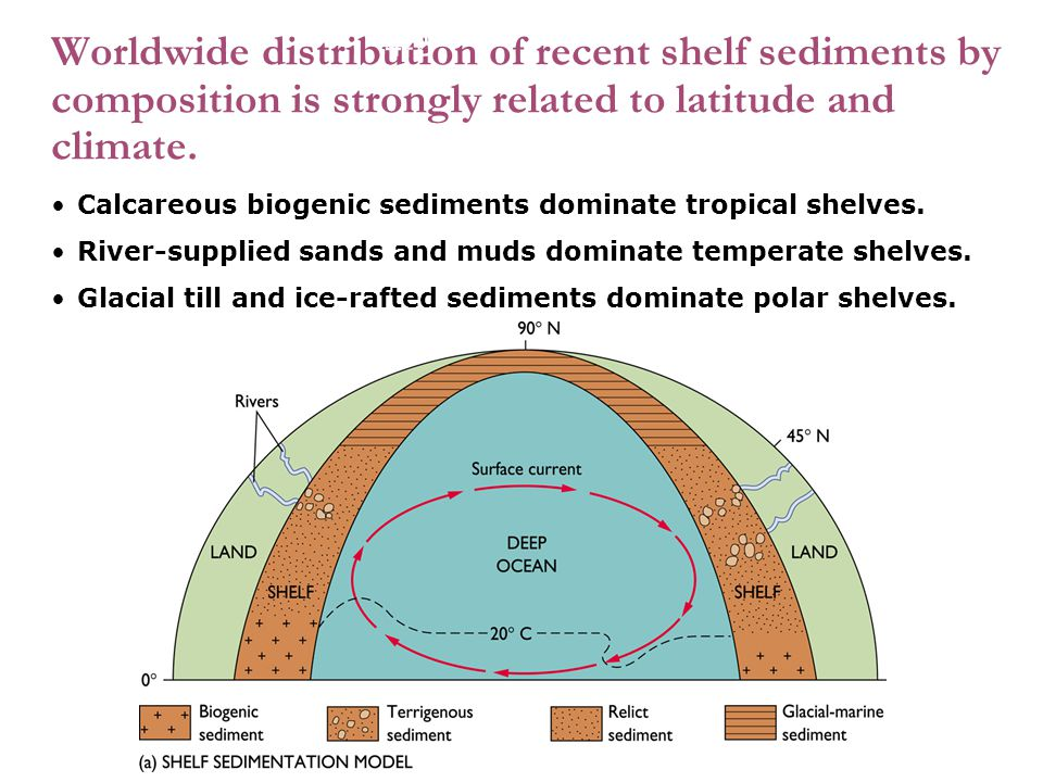 1 Worldwide distribution of recent shelf sediments by composition is strongly related to latitude and climate. Calcareous biogenic sediments dominate