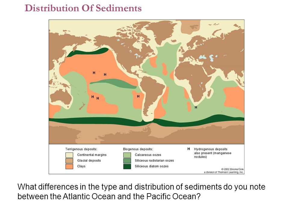 1 What differences in the type and distribution of sediments do you note between the Atlantic Ocean and the Pacific Ocean.