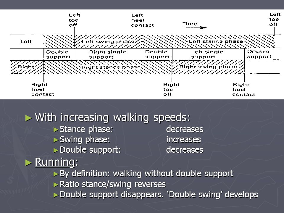 ► With increasing walking speeds: ► Stance phase:decreases ► Swing phase:increases ► Double support:decreases ► Running: ► By definition: walking without double support ► Ratio stance/swing reverses ► Double support disappears.